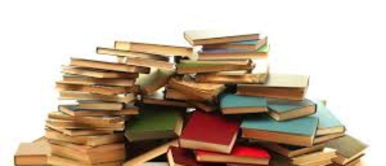 Article : Journée internationale de l'écrivain Africain, pour que vive à jamais le livre!